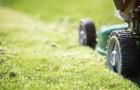 Die besten Tipps zum Rasen säen