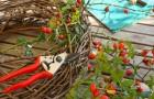 Herbstkranz – der Hingucker für Ihr Zuhause