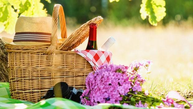 Sommer –Sonne – Picknickzeit!