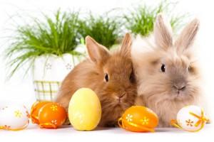 Frohe Ostern mit QUELLE